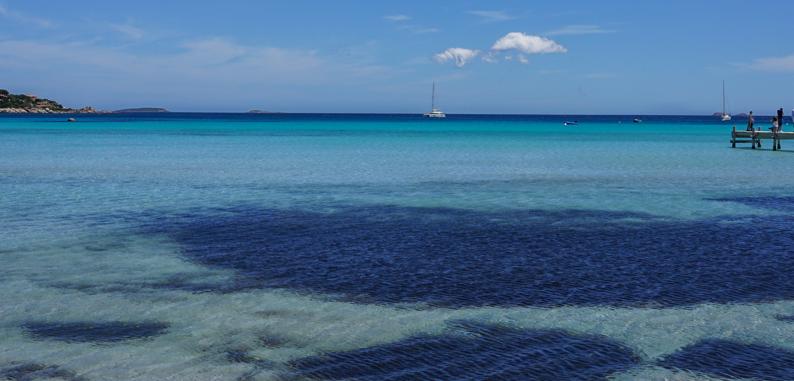 Top des plages à faire en Corse du Sud